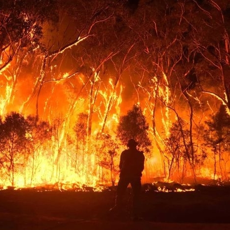 Australian bushfires 2019-20: what does this mean for the pulp & paper industry?